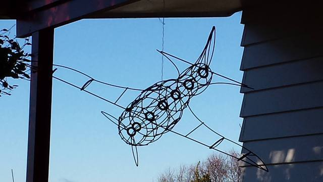 Wire Framed Plane